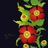 Poppy line part at blak paper background Stock Photo