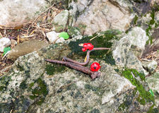 Poppy love red flower with iron hook on stone Royalty Free Stock Photos