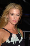 Poppy Montgomery Royalty Free Stock Photos