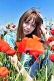 Poppy mood Royalty Free Stock Image