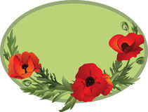 Poppy oval. The oval frame with poppies. Vector illustration Stock Image