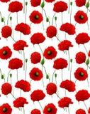 Poppy pattern Stock Photos