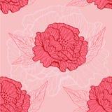 Poppy pattern Royalty Free Stock Photo