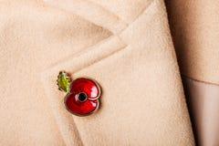 Poppy Pin roja como símbolo del día de la conmemoración Imagen de archivo libre de regalías