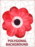 Poppy polygonal Stock Photo