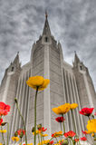 Poppy Pop. Flowers spring bloom contrast soft yellow red architecture gray daunting heavy angles spires clouds dark Stock Photography