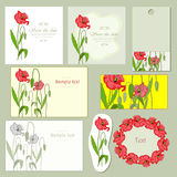 Poppy. Red poppy and bright nice frames vector illustration
