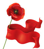 Poppy and red ribbon Royalty Free Stock Photos