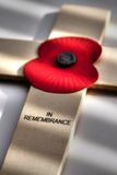 Poppy Remembrance Day C Royalty Free Stock Images