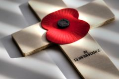 Poppy Remembrance Day D Fotografie Stock Libere da Diritti