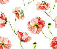 Poppy seamless pattern Royalty Free Stock Photos