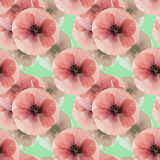 Poppy. Seamless pattern texture of pressed dry flowers. Royalty Free Stock Photos