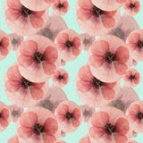 Poppy. Seamless pattern texture of pressed dry flowers. Royalty Free Stock Photo