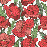 Poppy seamless vector pattern Royalty Free Stock Image