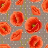 Poppy seamless wallpaper Royalty Free Stock Photo