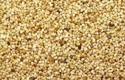 Poppy seed background Royalty Free Stock Image