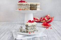 Poppy Seed Cake Fotografia Stock Libera da Diritti