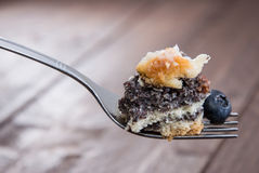 Poppy-Seed Cake on a fork Stock Photos