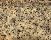 Poppy Seed Cake Texture Stock Photography