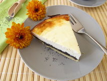 Poppy-seed cheese cake Stock Photography