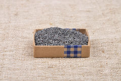 Poppy seed Royalty Free Stock Photography