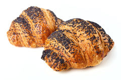 Poppy Seed Croissants or Buns Royalty Free Stock Photo