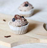 Poppy seed cupcakes. Stock Photos