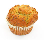 Poppy seed muffin Royalty Free Stock Photography