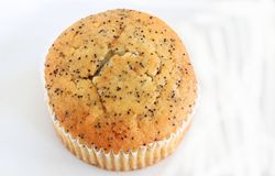 Poppy Seed Muffin Photographie stock