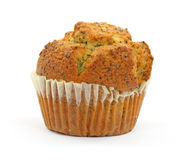 Poppy seed muffin on white background Stock Image