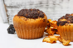 Poppy-seed muffins Stock Photography