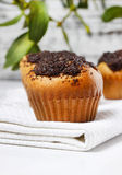 Poppy-seed muffins Stock Photo