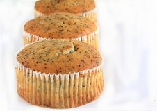 Poppy Seed Muffins Royalty Free Stock Photos