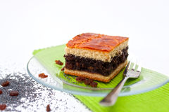 Poppy seed and raisin cookie. Delicious poppy seed and raisin cookie Stock Images
