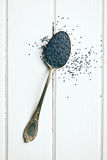 Poppy seed in silver spoon Stock Photography