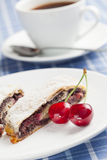 Poppy seed strudel with cherry. Stock Images