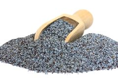 Poppy seeds Royalty Free Stock Photo