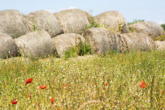Poppy seeds and Bales of straw Stock Image