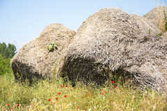 Poppy seeds and Bales of straw Royalty Free Stock Photos