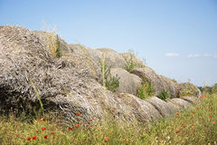 Poppy seeds and Bales of straw Stock Photo