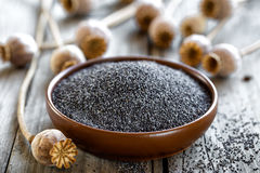 Poppy seeds. With heads on a wooden table stock photo