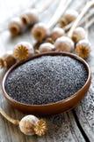 Poppy seeds Stock Photography