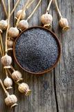 Poppy seeds stock photos