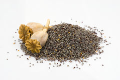 Poppy seeds isoalted Royalty Free Stock Photography