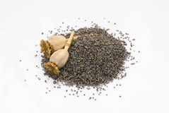 Poppy seeds isoalted Royalty Free Stock Photo