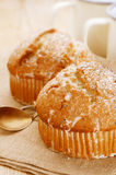 Poppy seeds and lemon muffins Stock Photography