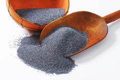 Poppy seeds. Scoop of whole poppy seeds stock images