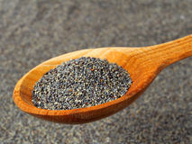 Poppy seeds Stock Photos