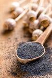 Poppy seeds stock image