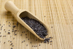 Poppy seeds in a wooden spoon Royalty Free Stock Photos